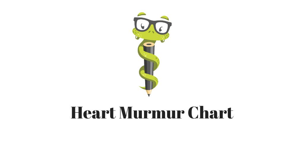 Medgeeks Heart Murmur Chart
