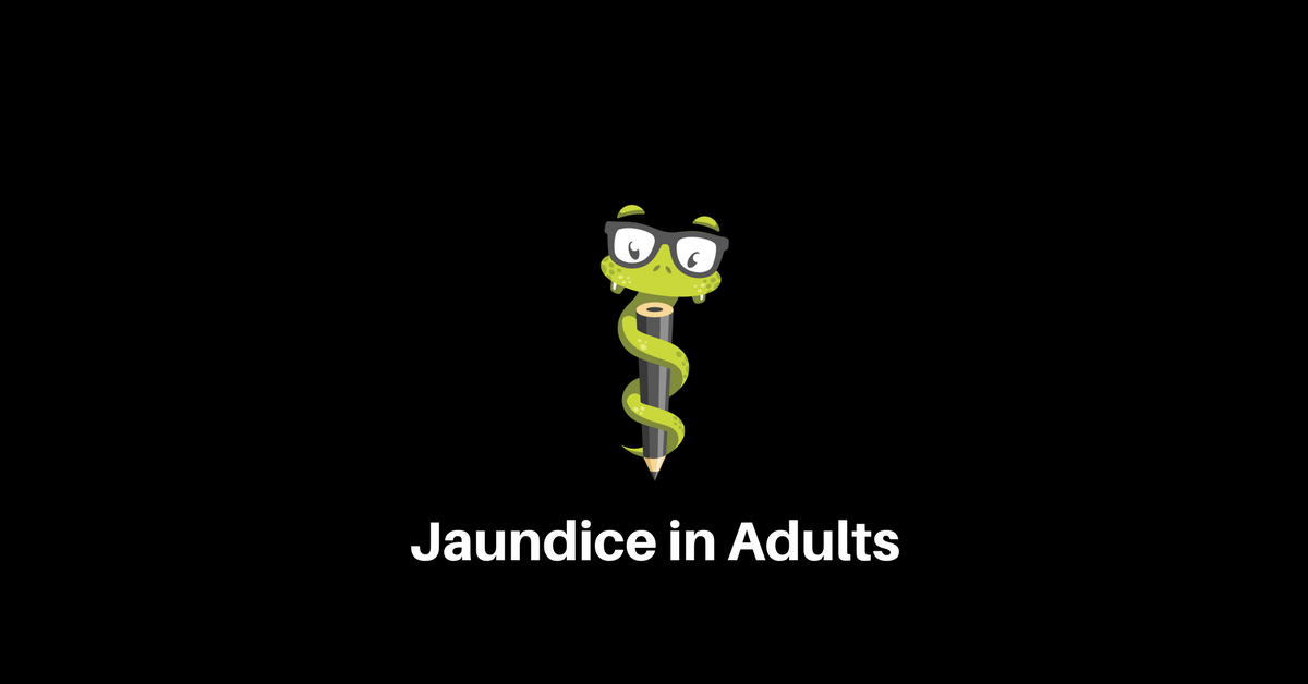 Medgeeks How to Workup Jaundice in Adults